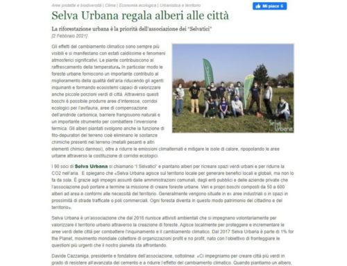 Selva Urbana regala alberi alle città