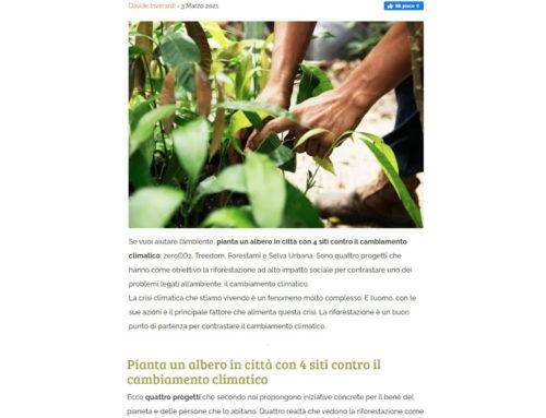 Pianta un albero in città: 4 progetti contro il cambiamento climatico