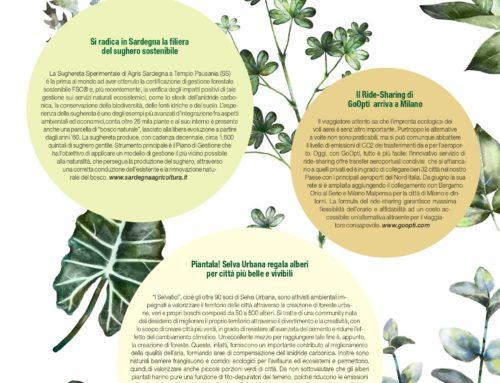Piantala! Selva Urbana regala alberi per città più belle e vivibili