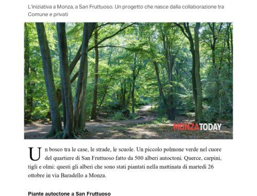 Arriva il bosco in città: 500 nuovi alberi danno respiro al quartiere